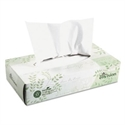 Picture of Envision 2 Ply Whte Facial Tissue (100 ct)